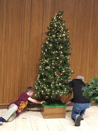 tree trimming2